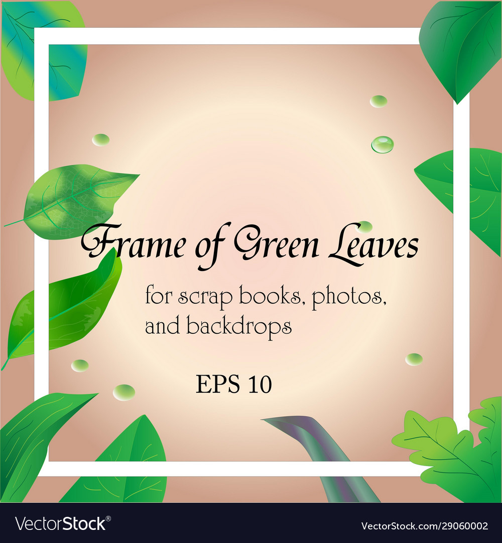 Frame and border green leaves