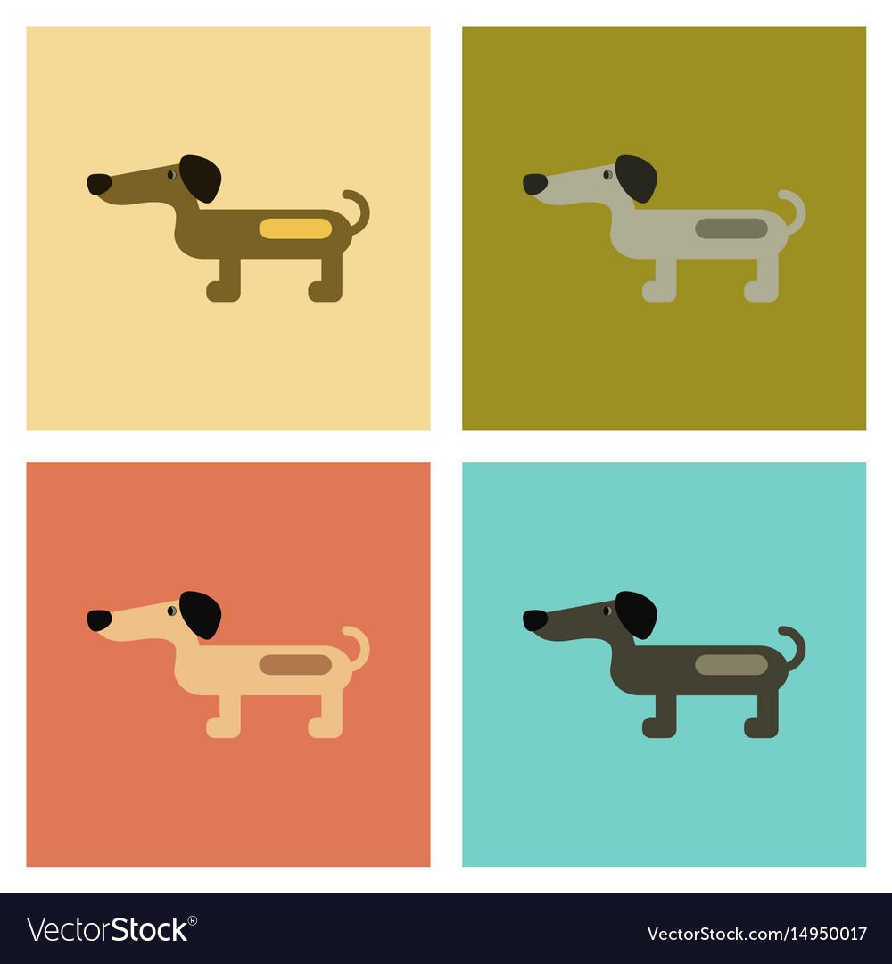 Assembly flat icons pet dog dachshund vector image