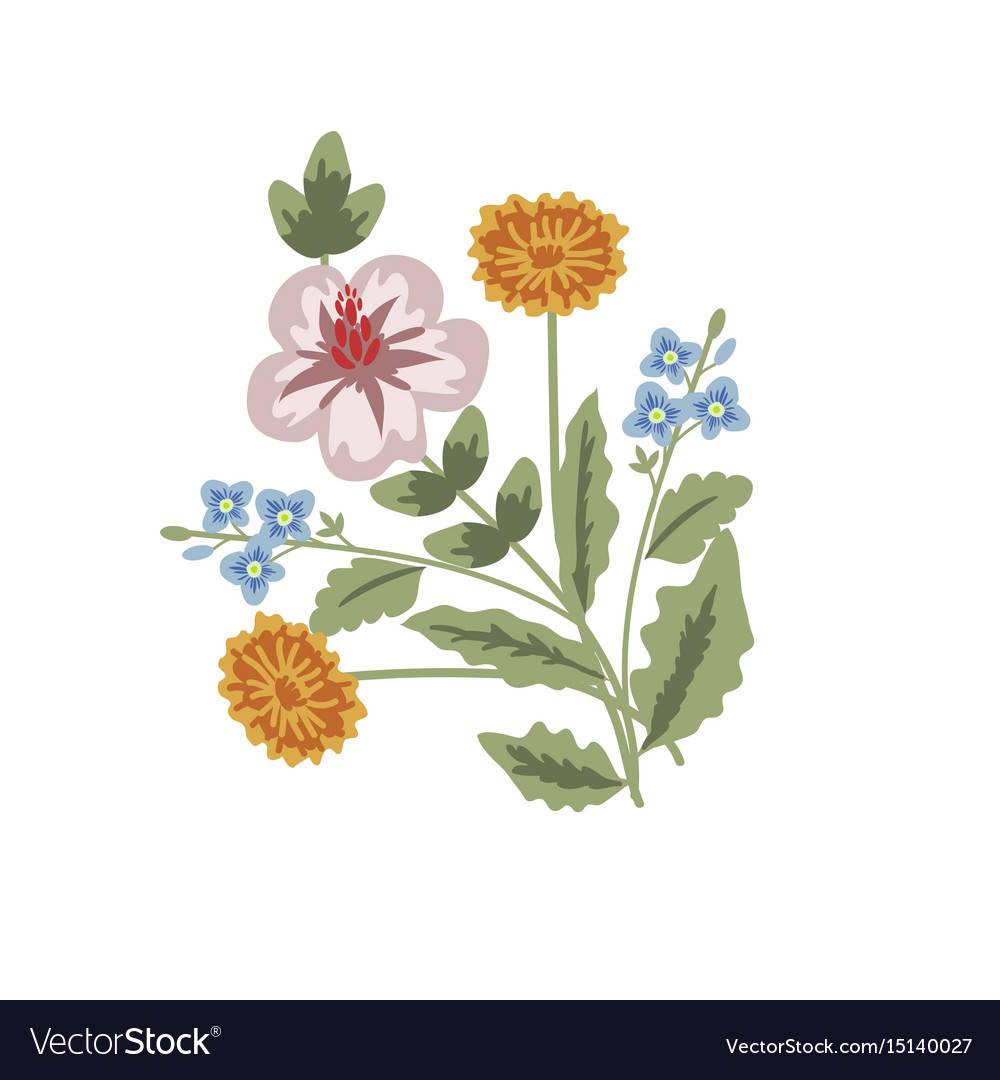 Floral decorative card vector image