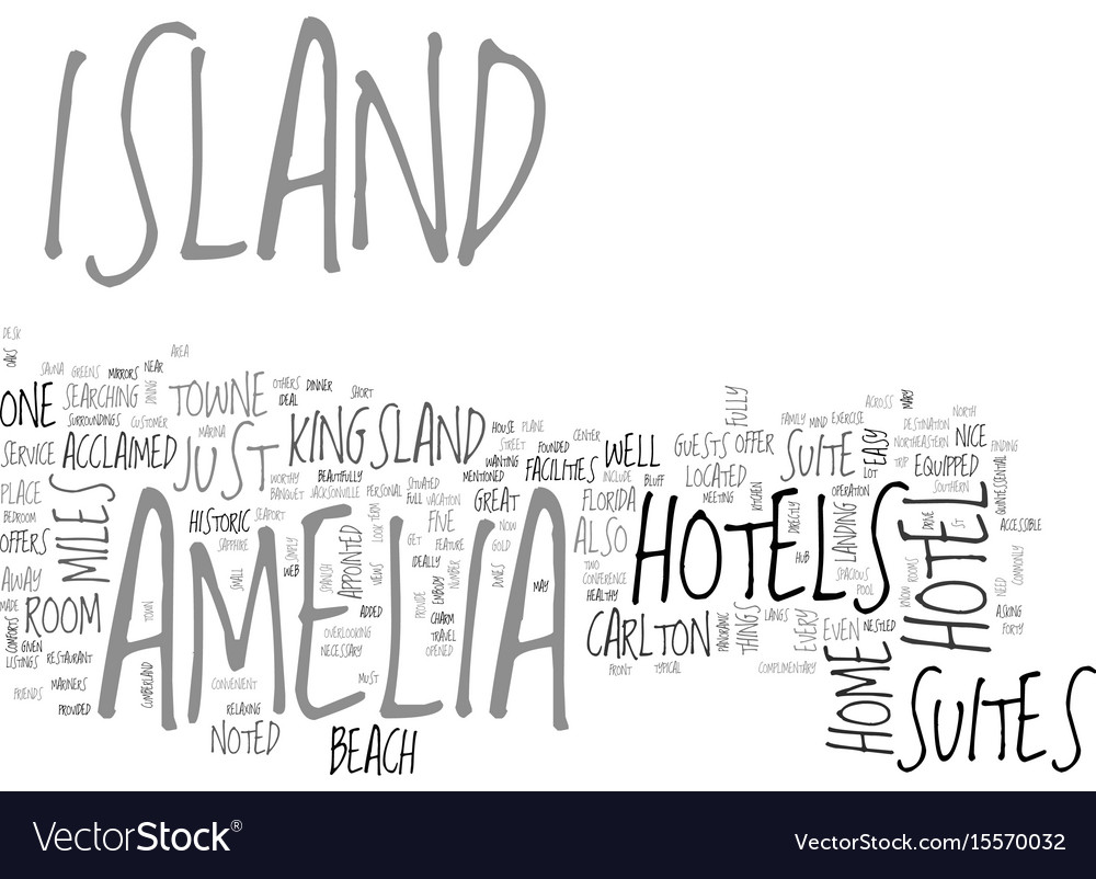 Amelia island florida text word cloud concept vector image