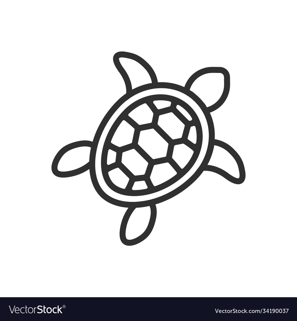Turtle line icon images vector
