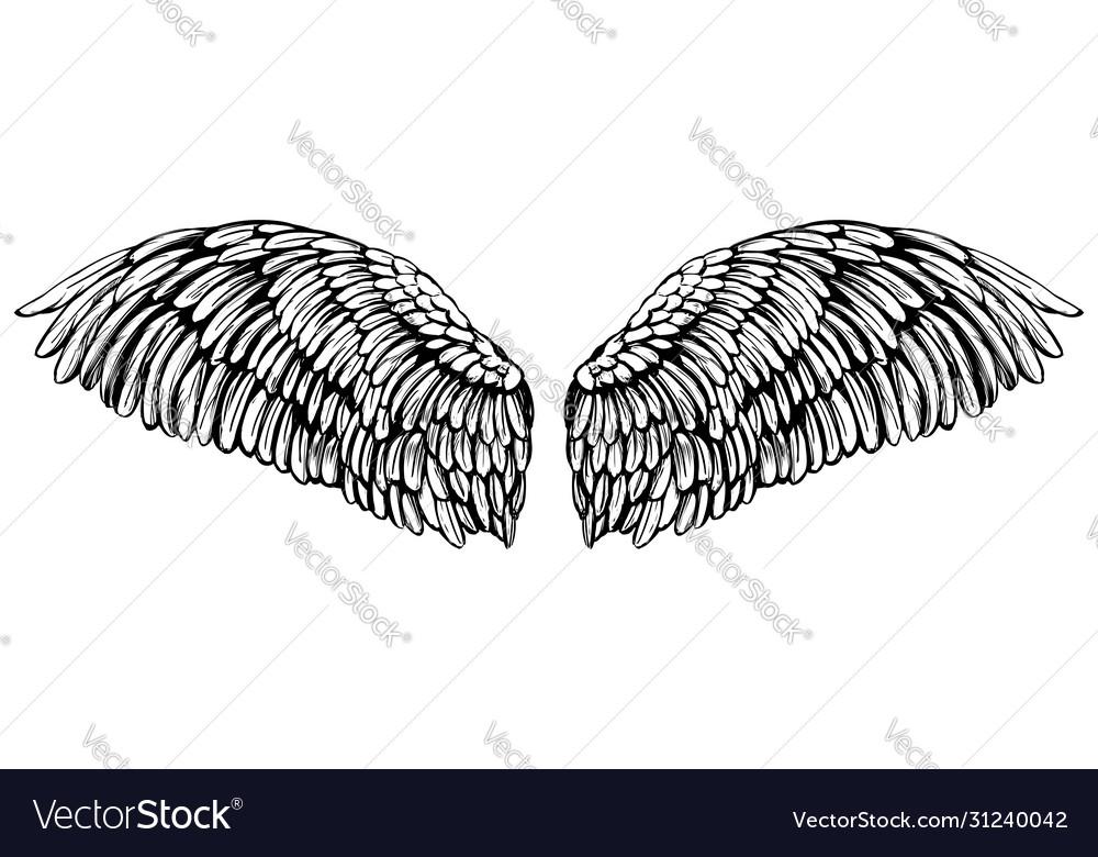 Angel wings bird wings collection cartoon hand