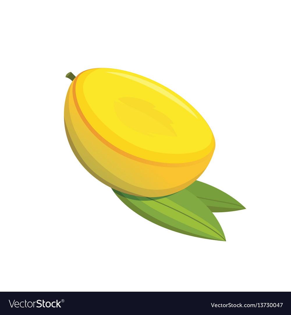 Mango yellow fruit isolated