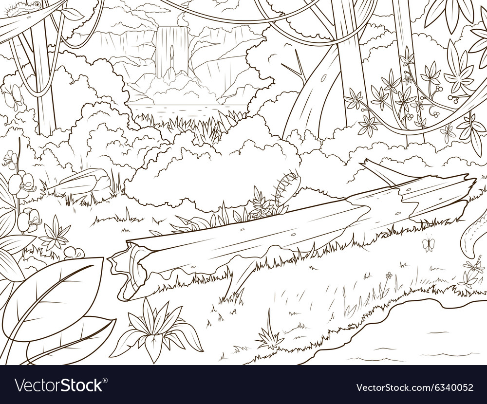 Jungle forest waterfal coloring book cartoon Vector Image