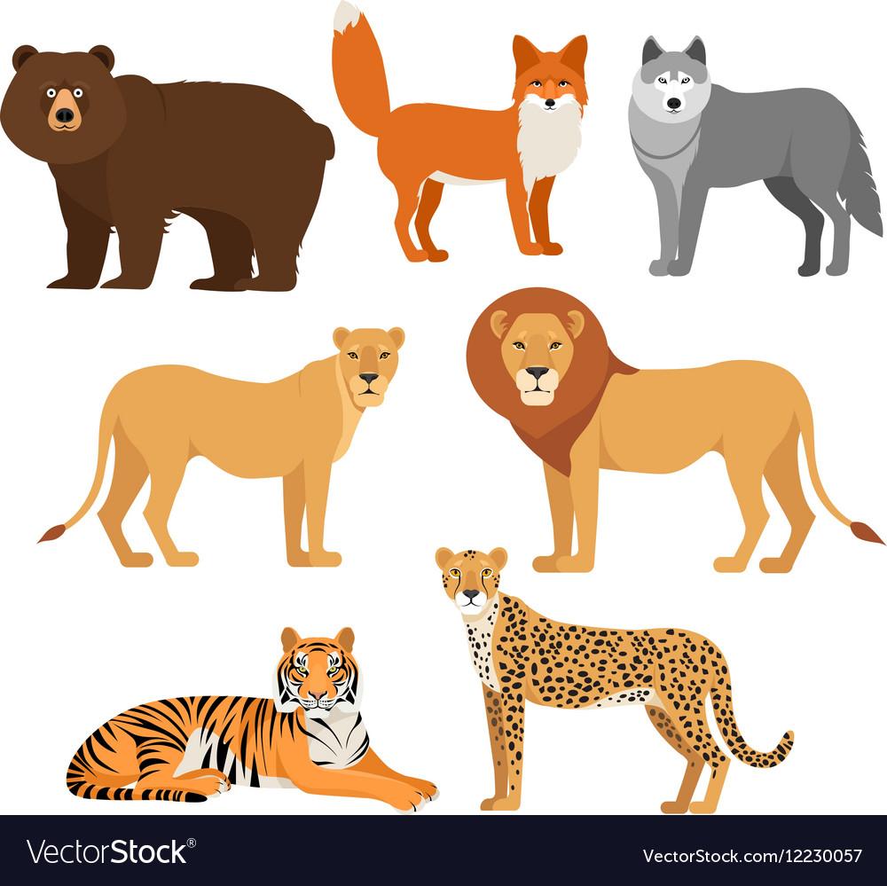 Predatory animals set wolf bear fox tiger lion