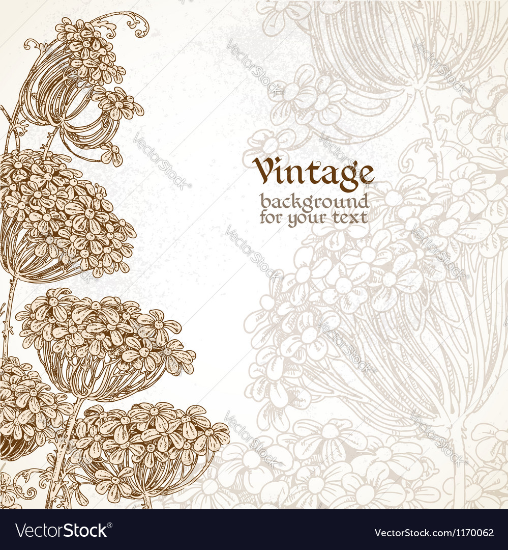 Wild flowers - umbrellas vintage background