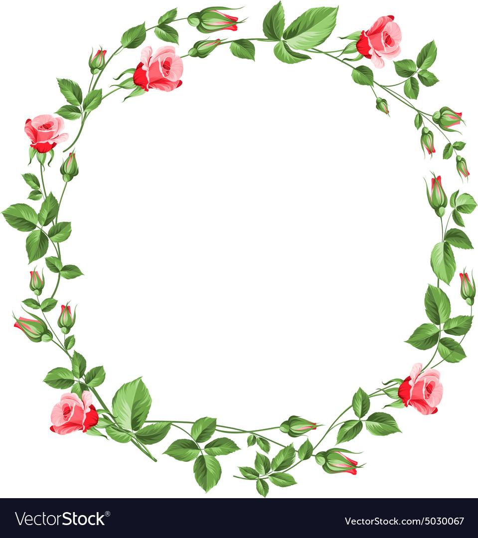 Rose wreath isolated on white