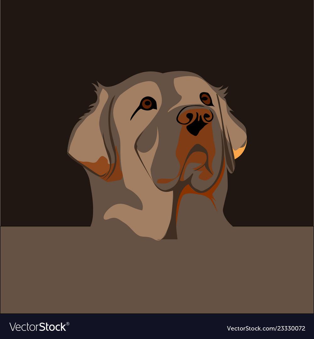 Head dog