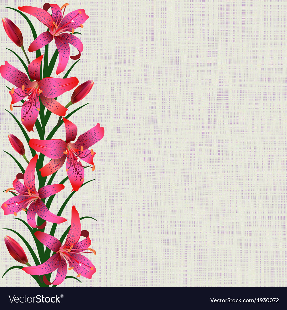 Pale background with red tiger lily flowers leaves