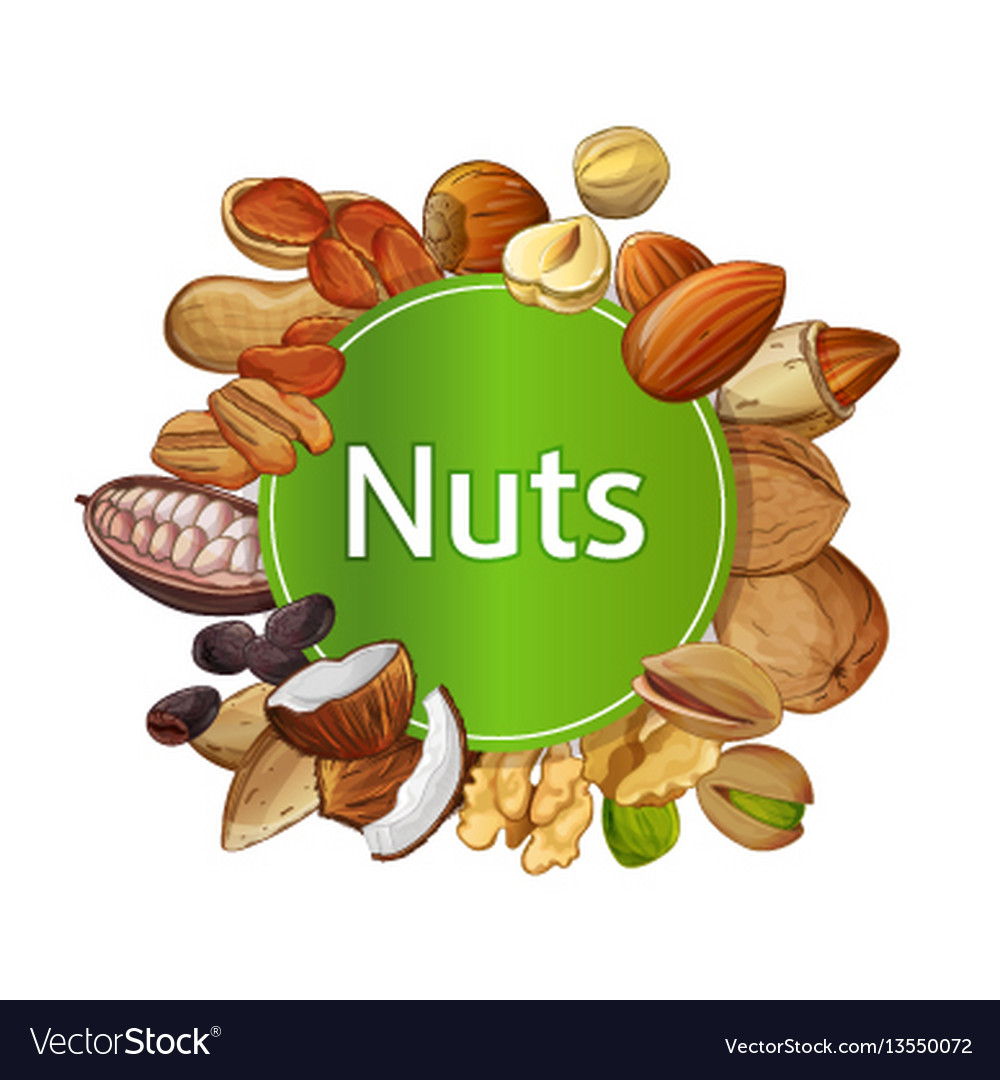 Nuts: composition 36