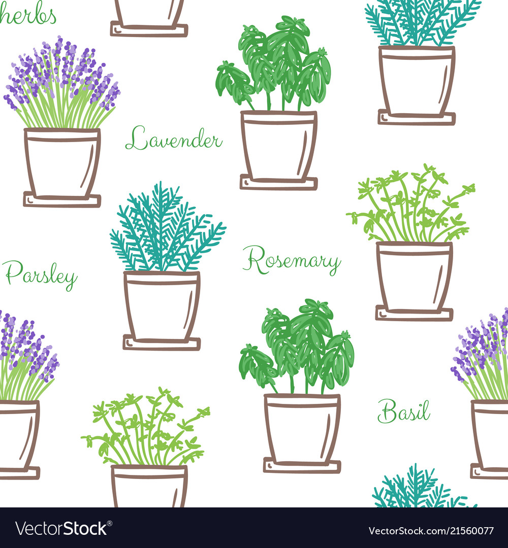 Frest garden herbs in pots seamless pattern