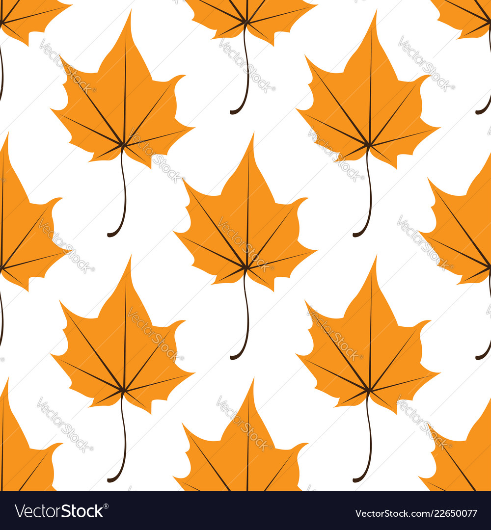 Maple leaves seamless white orange art