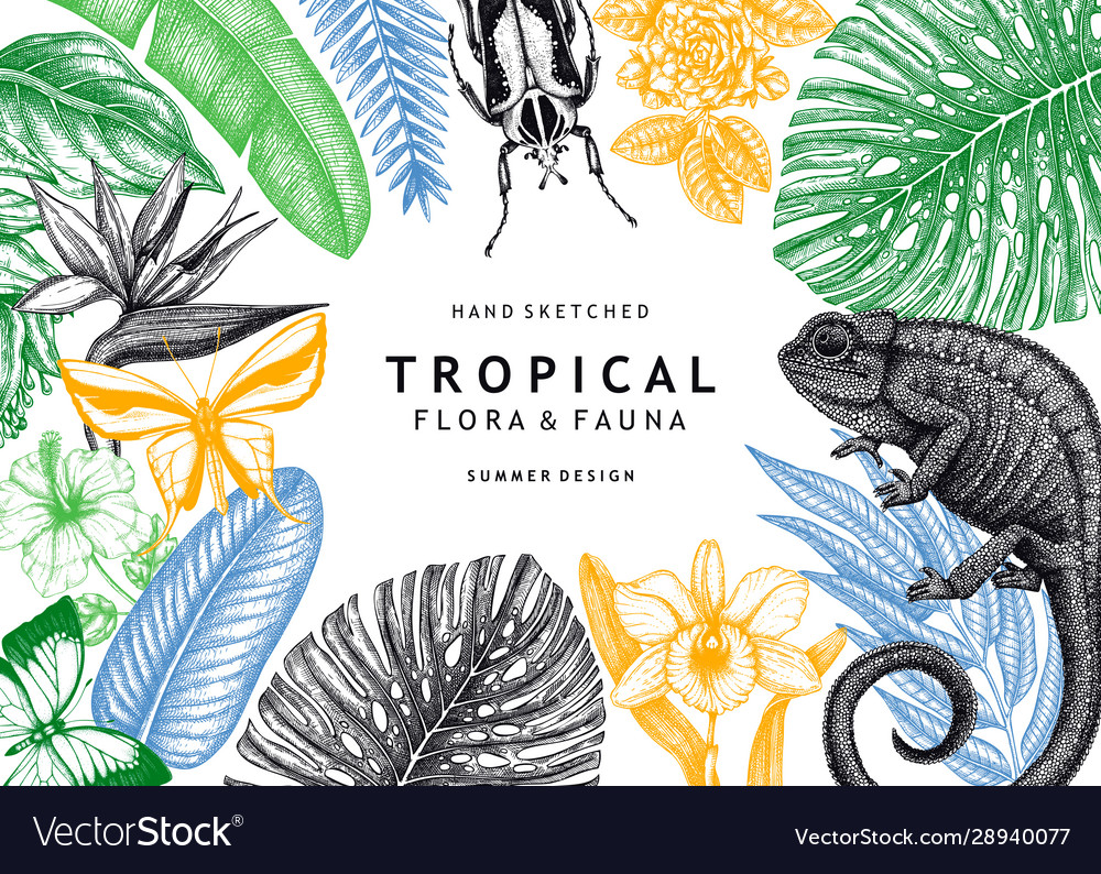 Tropical frame design background with hand drawn