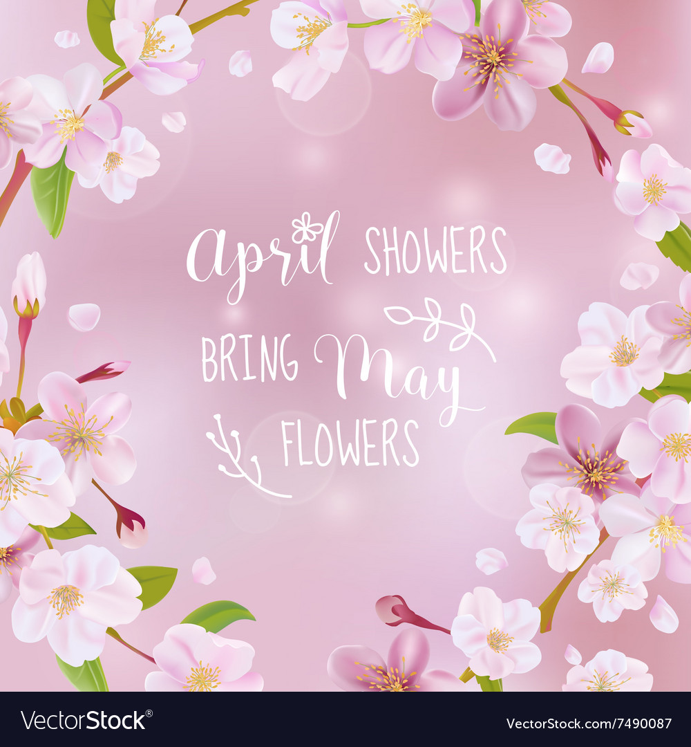 Cherry Blossom Spring Card   With Quote Vector Image
