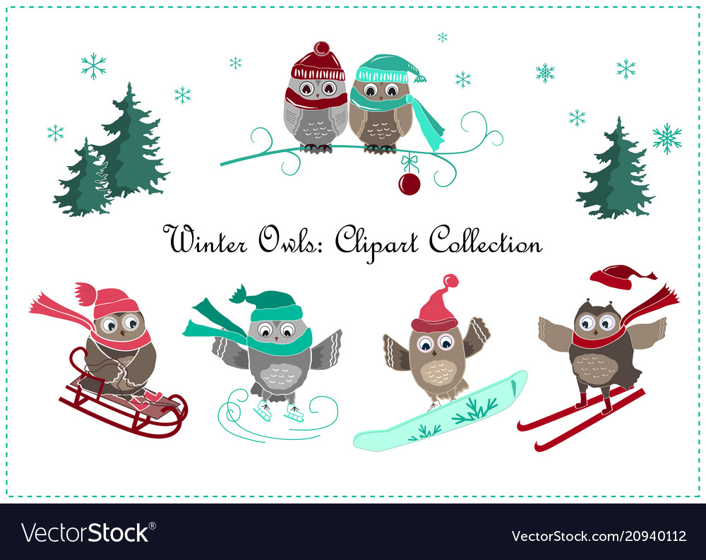 Cute winter owls banner baby birds and sport