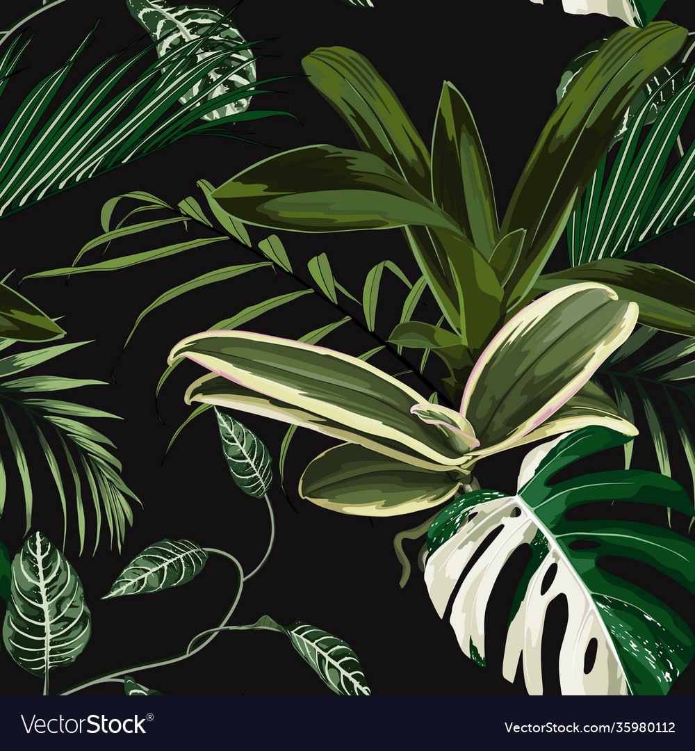 Tropical pattern palm tree leaves and plant
