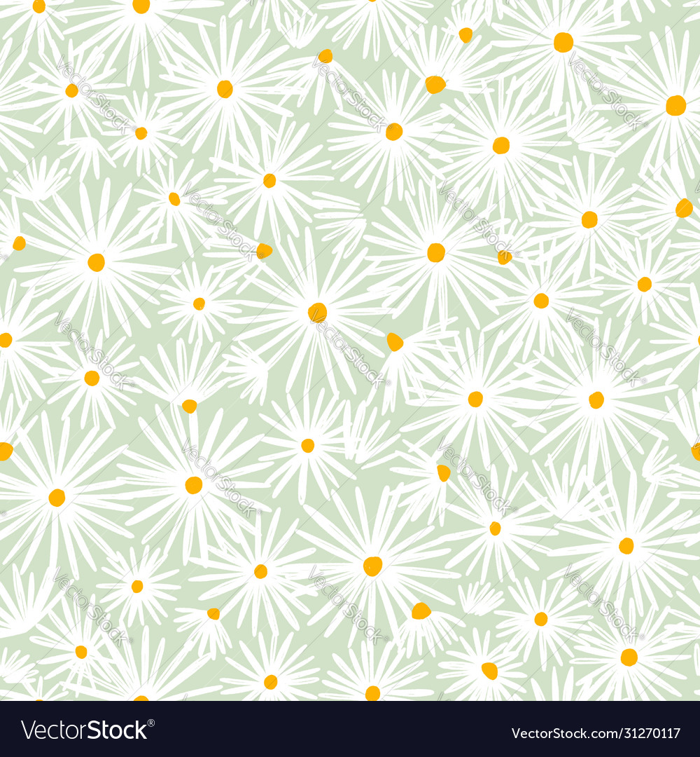 Beautiful white daisies on mint background