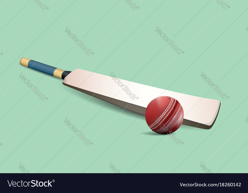 Cricket ball and bat vector image