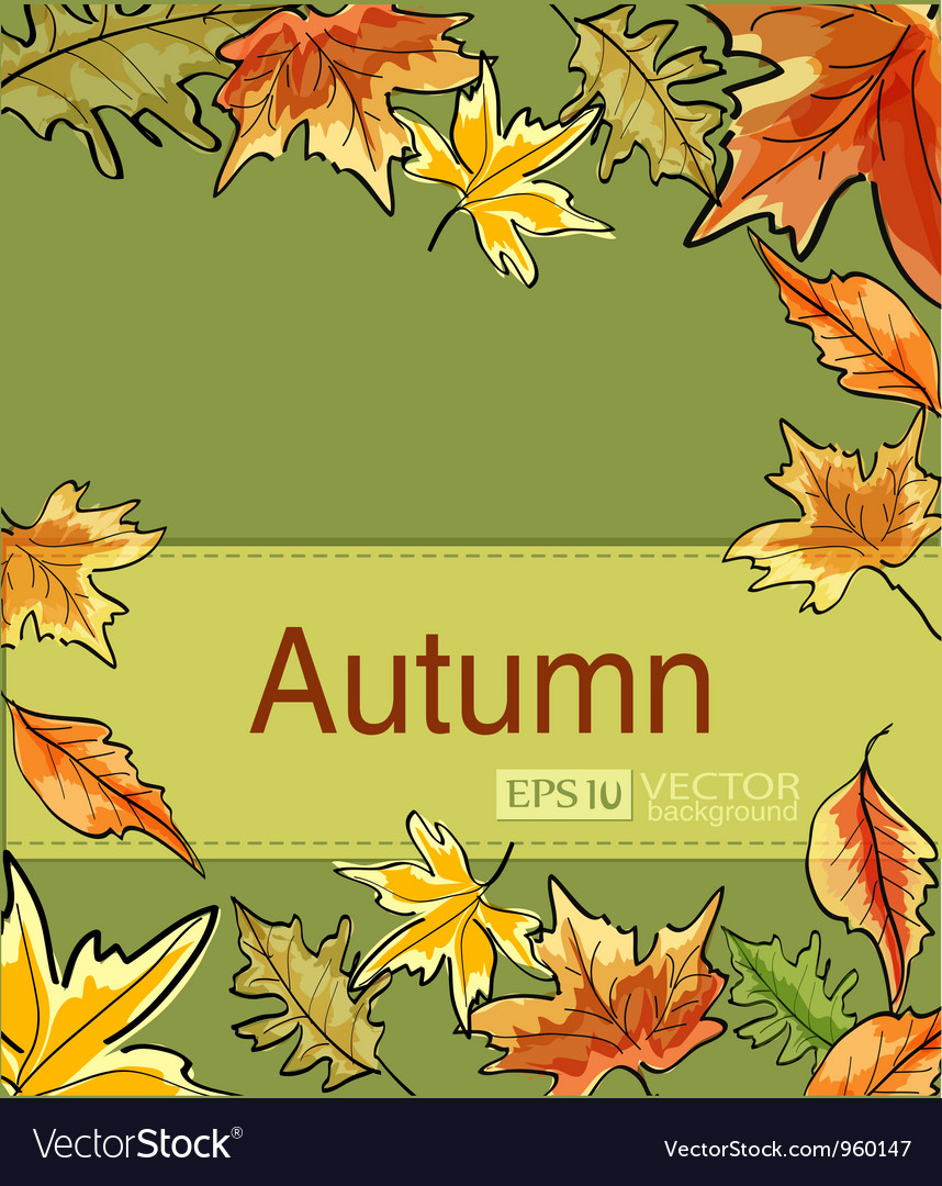 Autumn3 vs