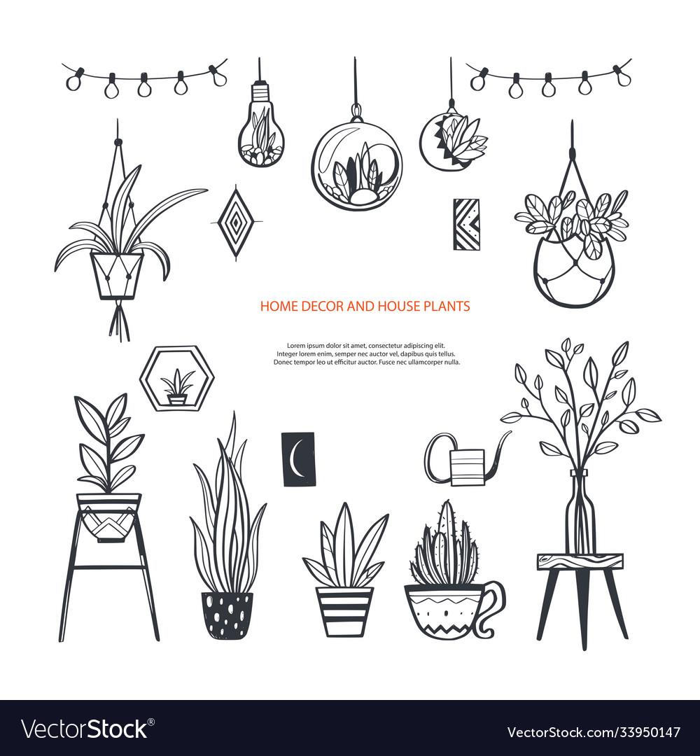 Home decor and house plants hand drawn set