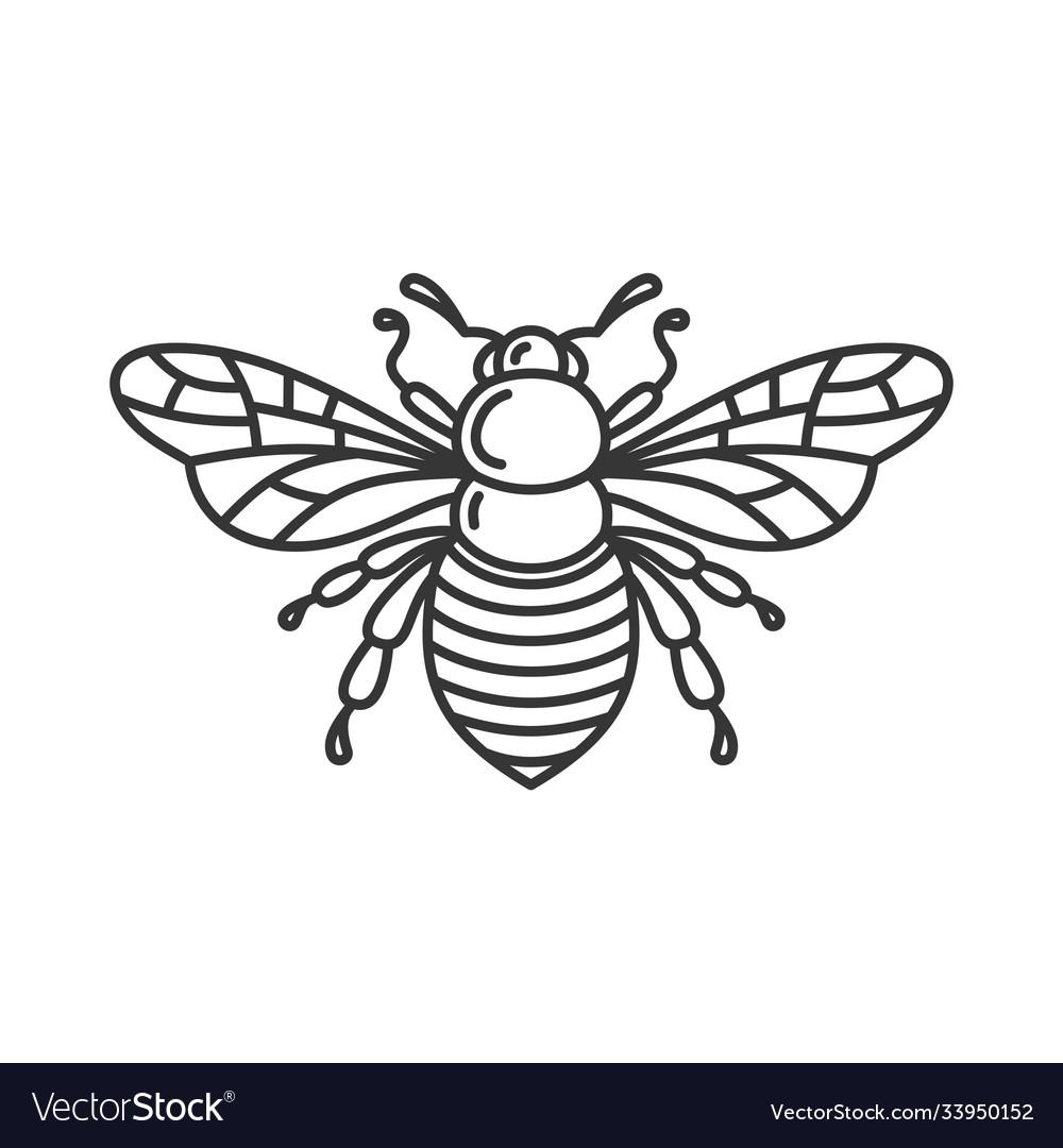 Bee icon bug logo on white background