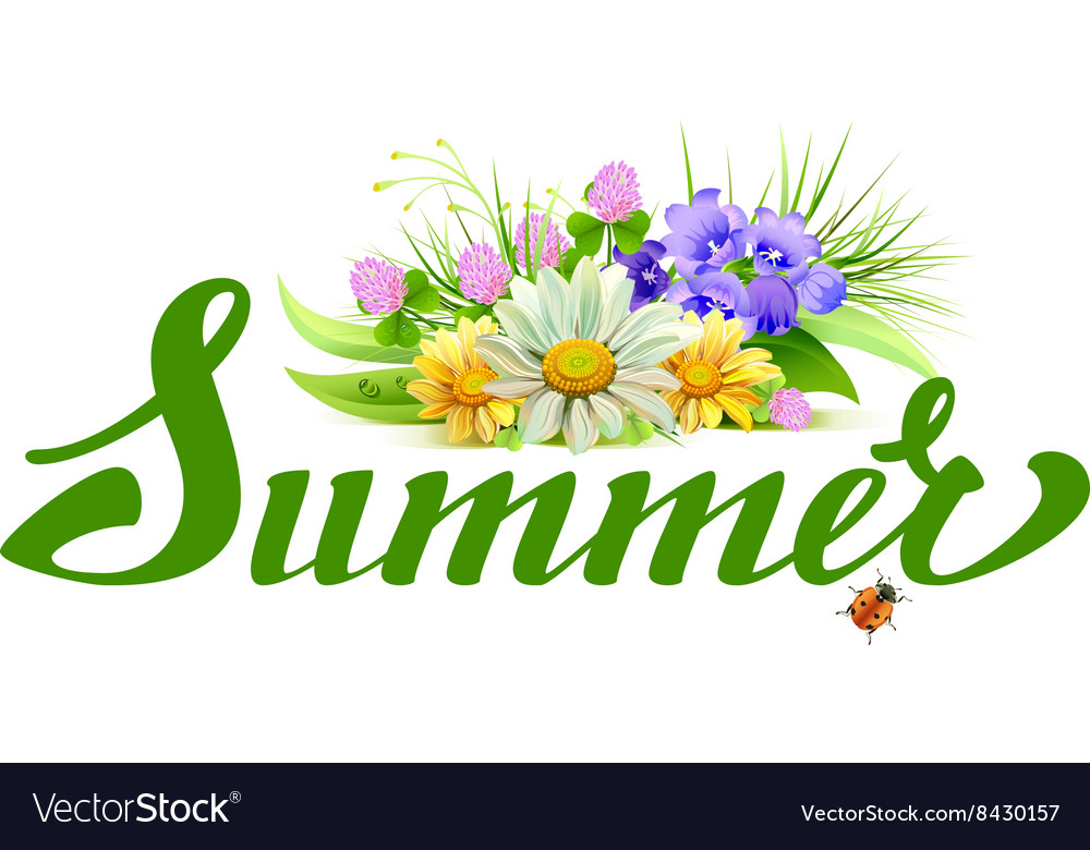 Summer lettering text Bouquet of wild flowers