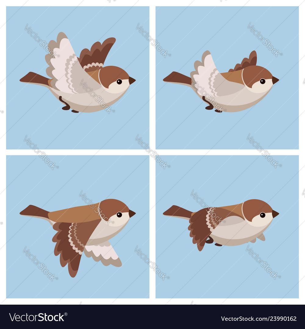 Cartoon flying house sparrow female animation