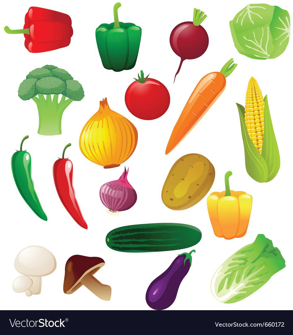 Vegetable Royalty Free Vector Image - VectorStock