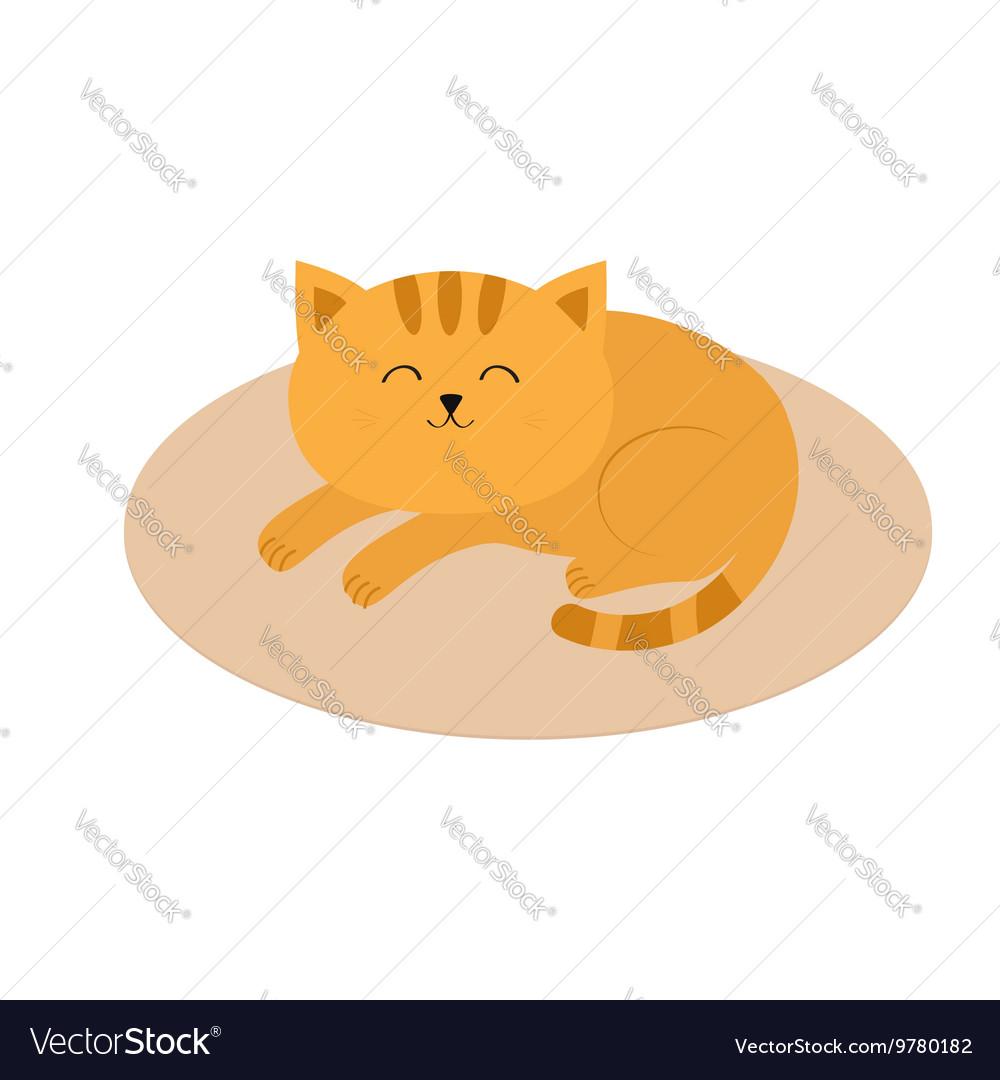 Cute orange cat lying sleeping on oval carpet rug vector image