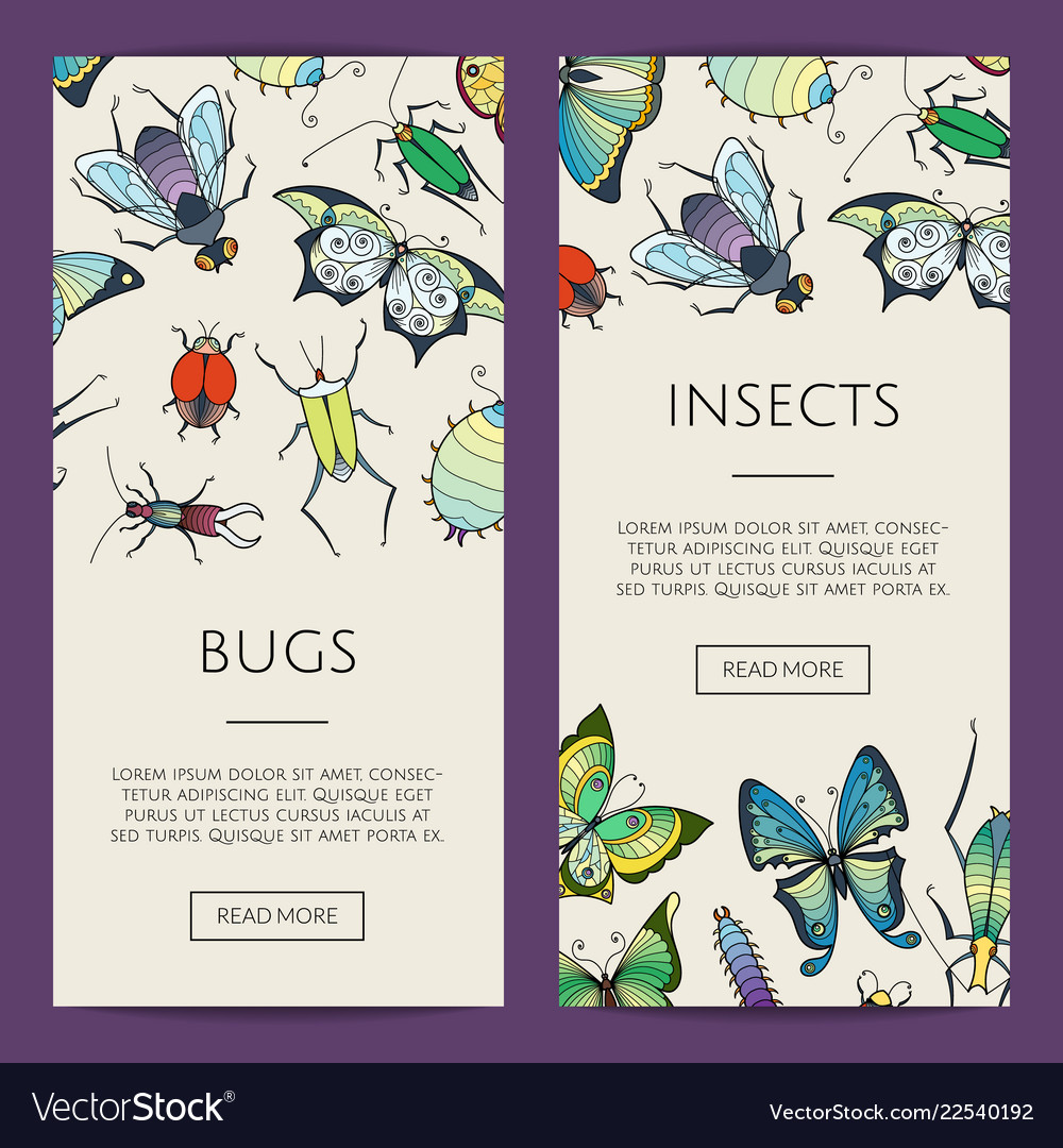 Hand drawn insects web banner