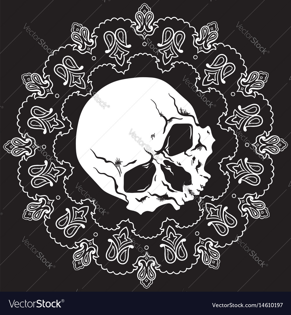 Bandana design with skull and paisley ornament vector