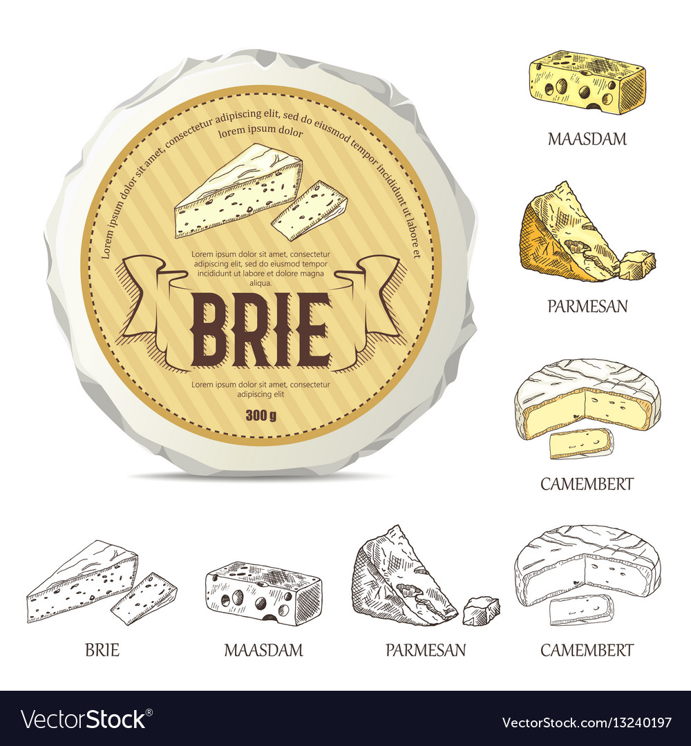 Creative sticker for brie on round cheese mockup