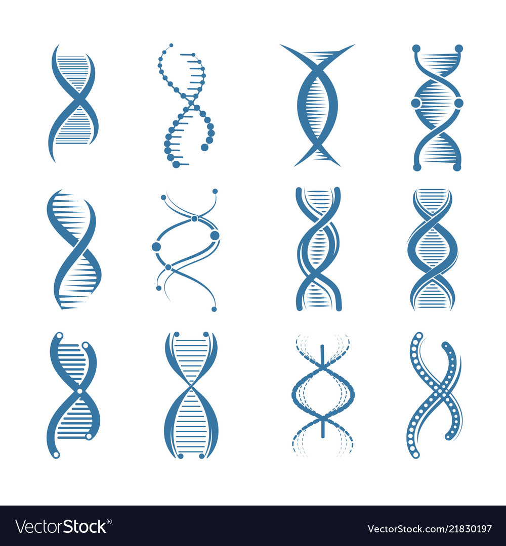 Dna icons genetic biology human structure medical