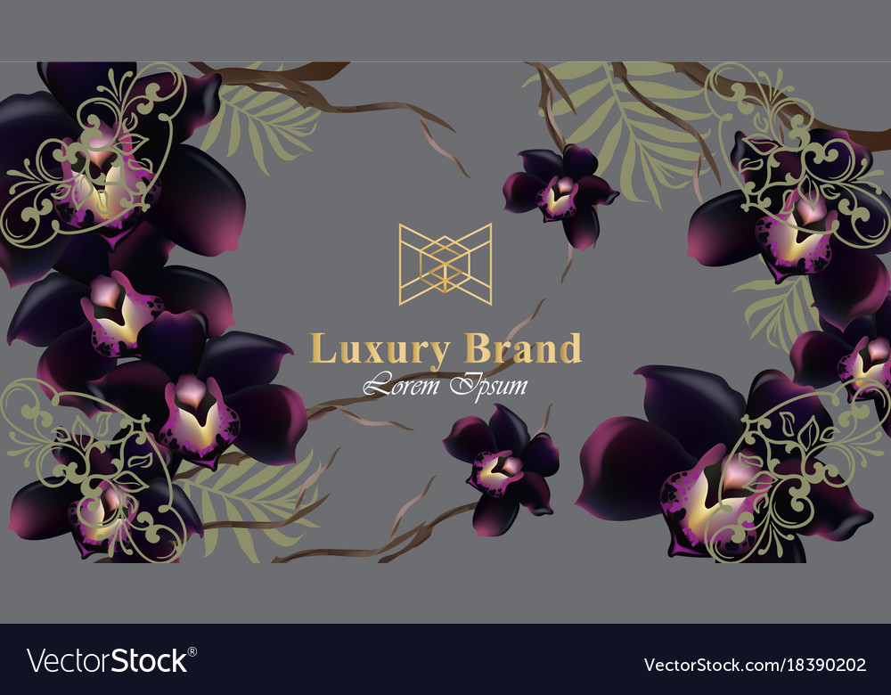 Black Orchid Flowers Card Beautiful Royalty Free Vector