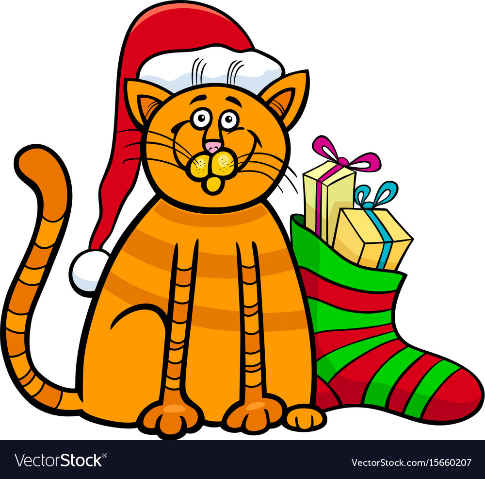 Cat with gifts on christmas time vector image
