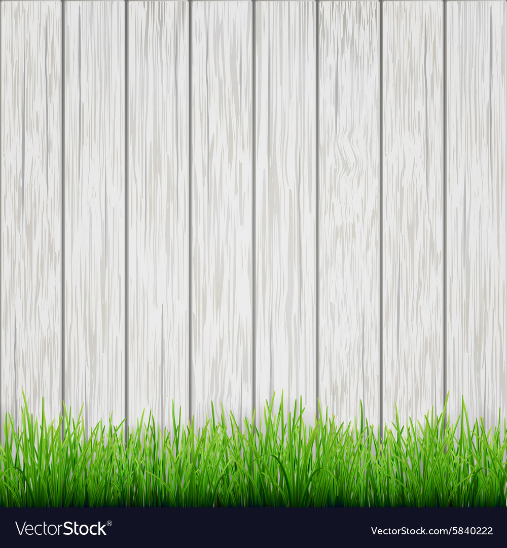 Green grass on white wood boards background