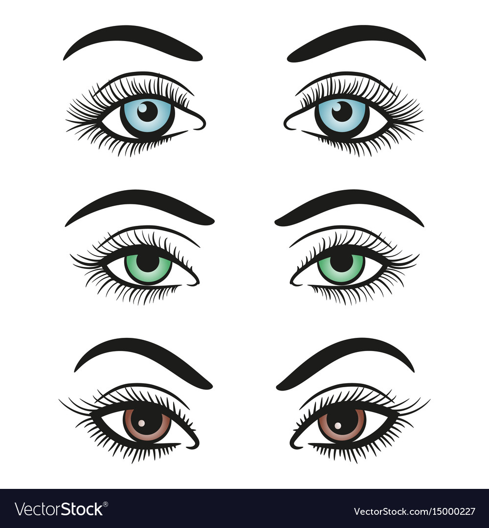 Basic colors female eyes and brows