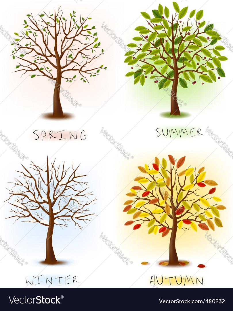 Set of season