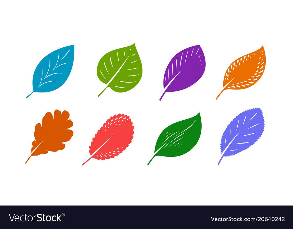 Decorative leaves set autumn nature concept