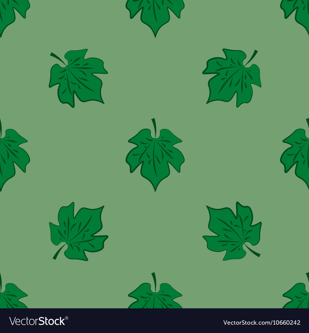 Leaves of maple on light-green background