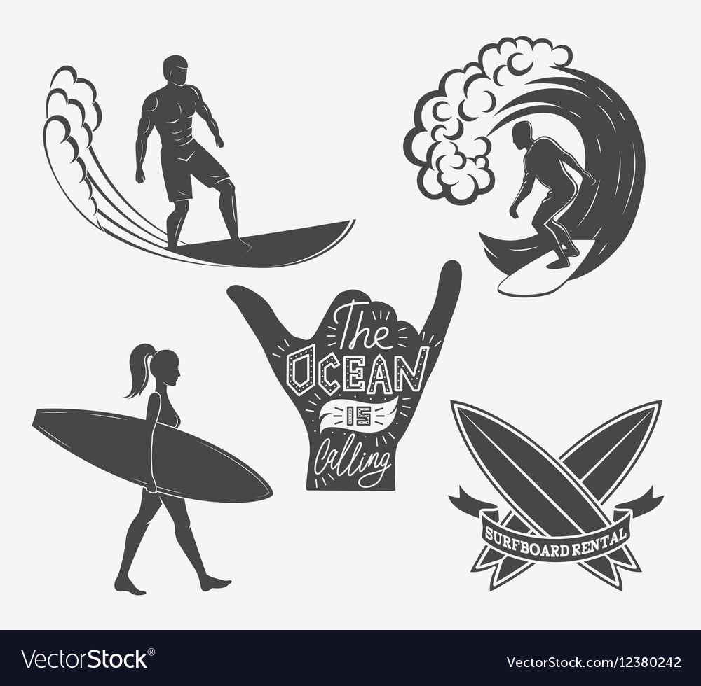 set of surfing vintage design elements surf logo vector image