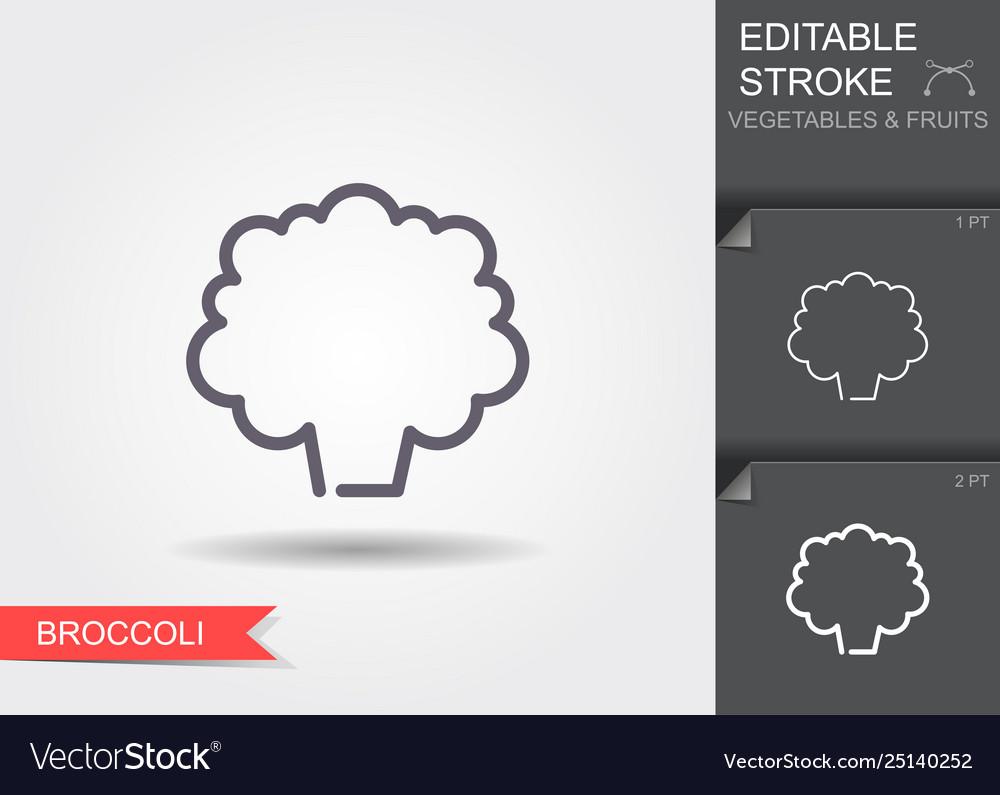 Broccoli line icon with editable stroke
