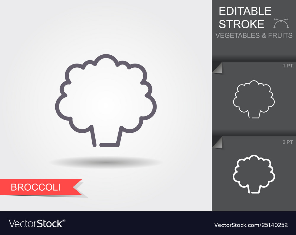 Broccoli line icon with editable stroke with