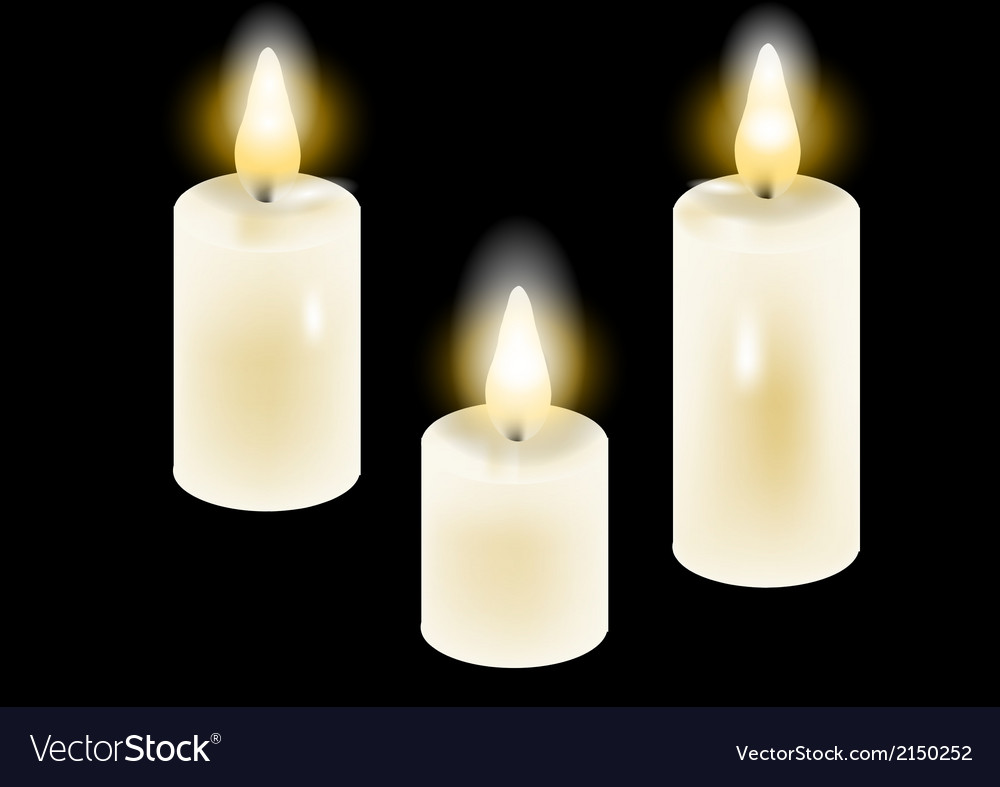 White candles vector image
