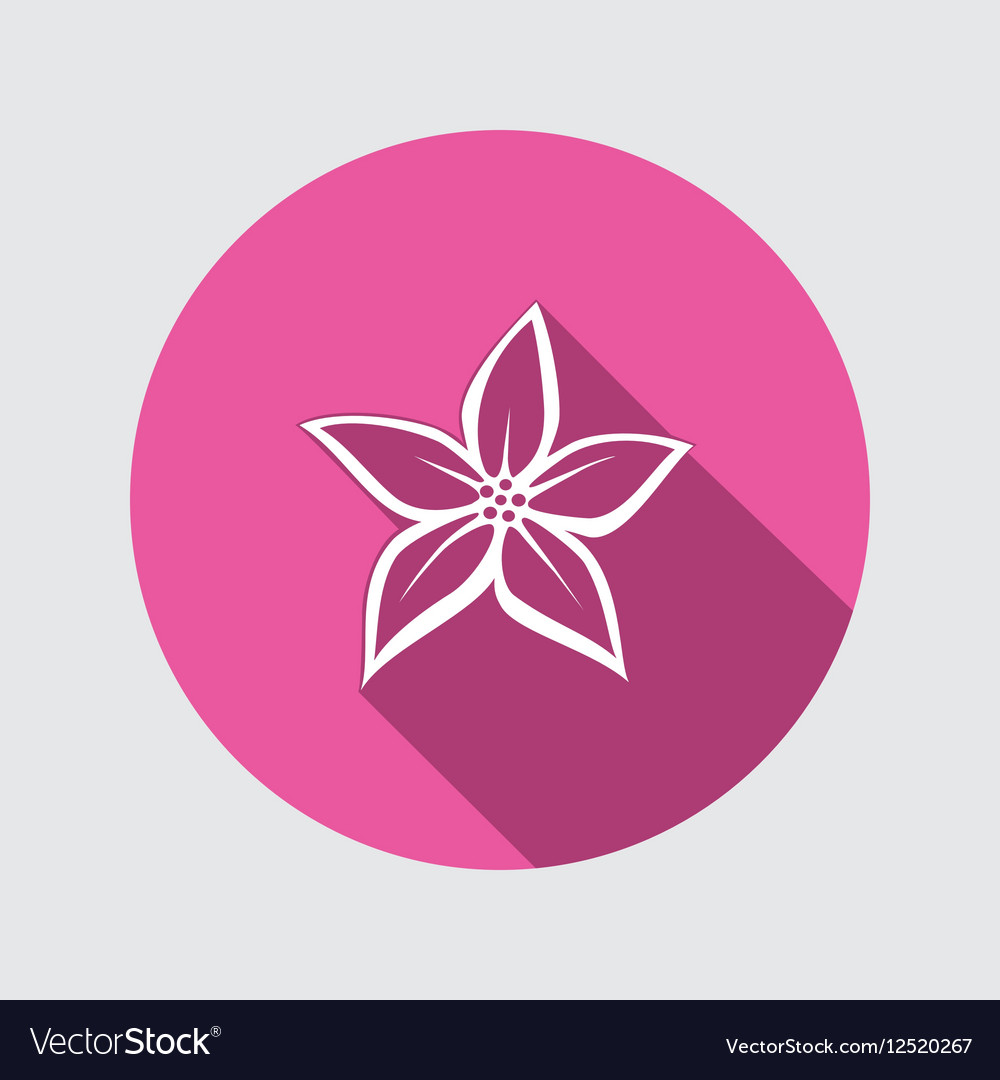 Orchid Flower Icons Floral Symbol Round White Vector Image