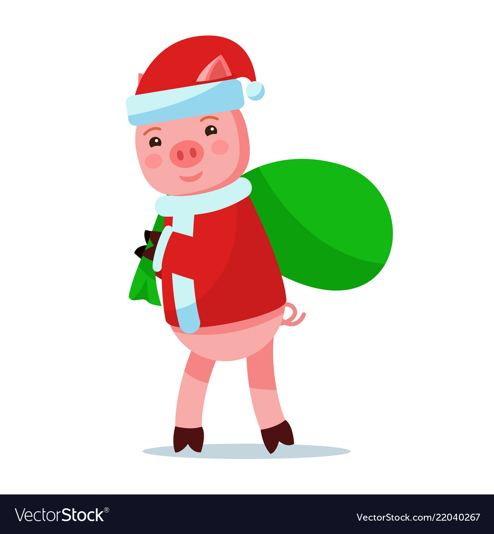 Piggy in santa claus costume carries bag with gift