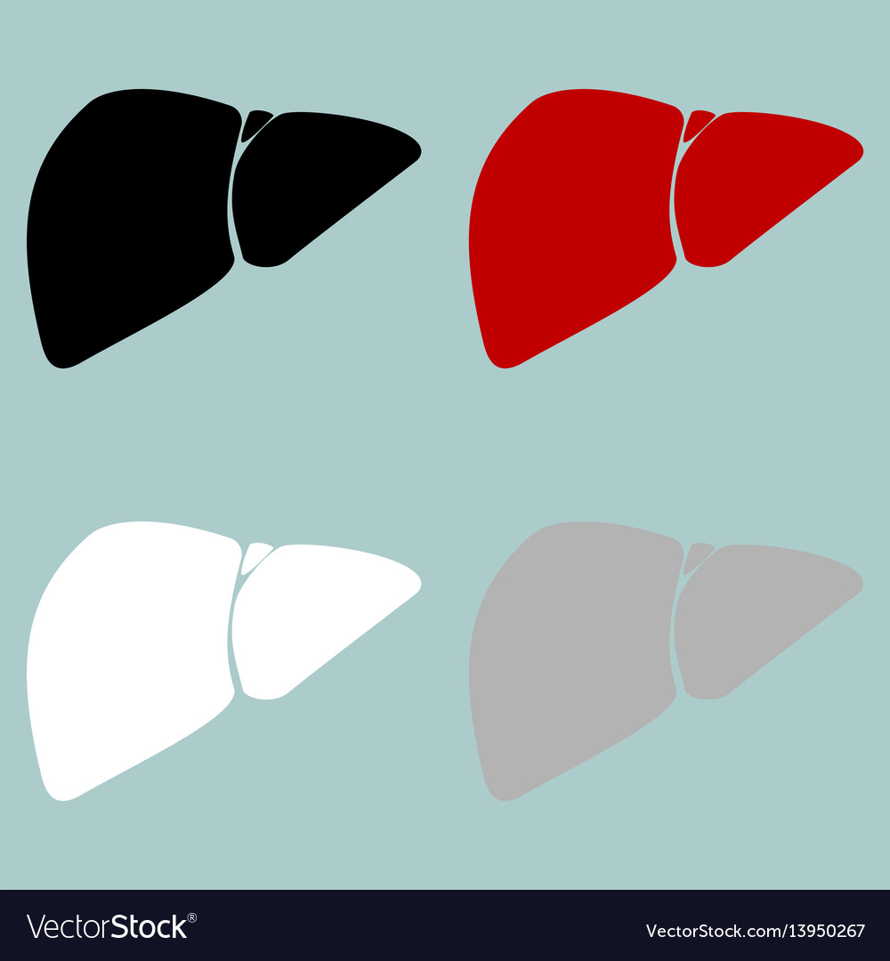 Red black grey white liver hepar icon vector image
