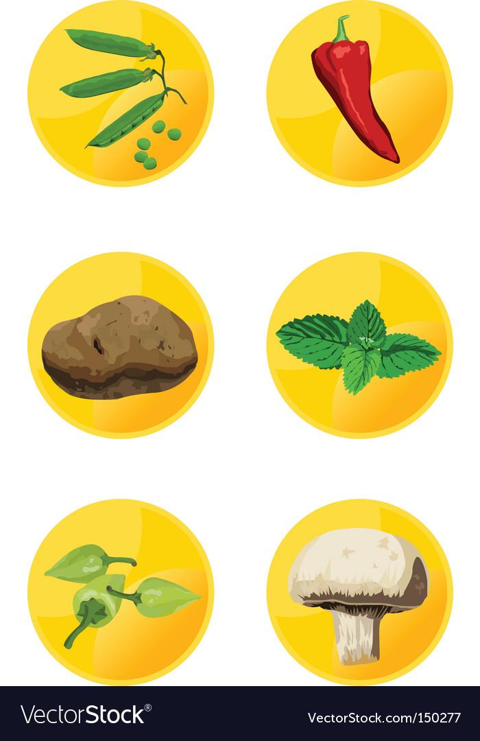 Icon veggies vector image