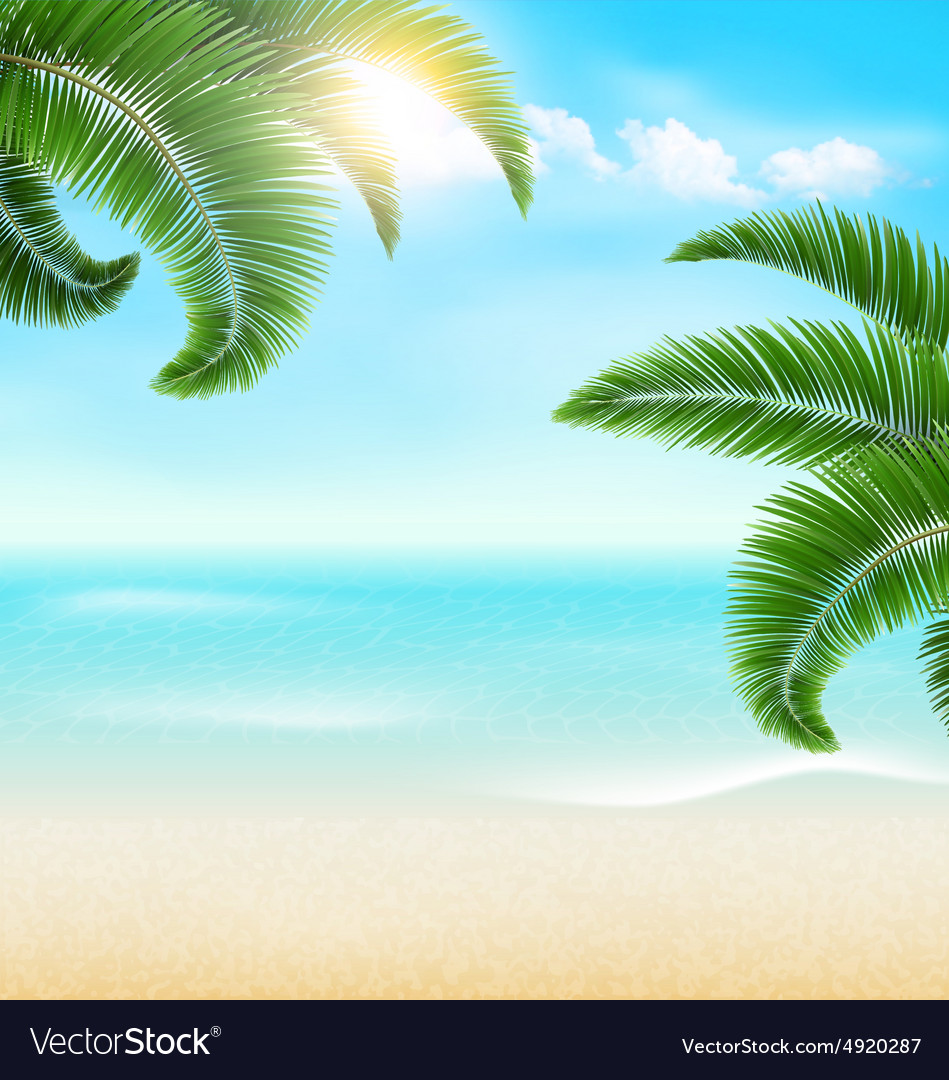 Beach with palm branches and clouds Summer vector image