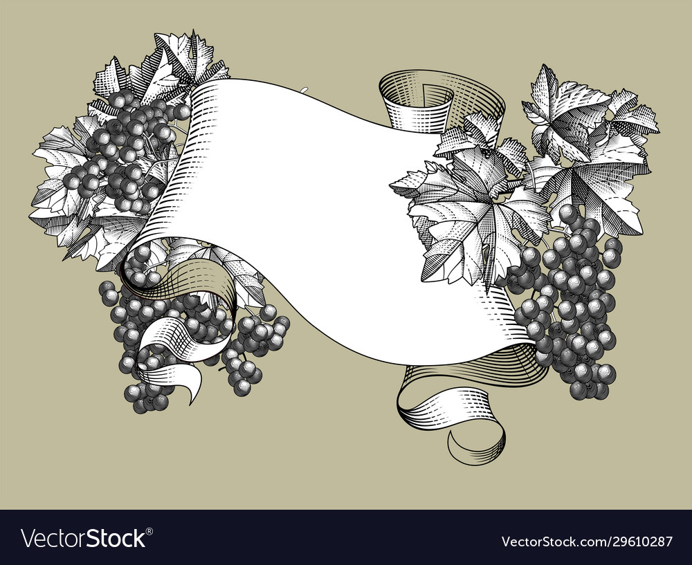 Ribbon banner with bunch grapes